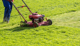 Worker mowing grass Stock Photo