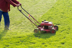 Worker mowing grass Stock Image