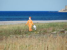 Cleaner on the beach stock photography