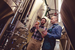 Worker and owner discussing over beer in containe. Low angle view of worker and owner discussing over beer in container at brewery Royalty Free Stock Photo