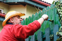 Worker with paint brush Royalty Free Stock Photos