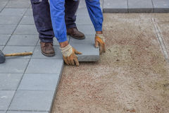 Worker paving new sidewalk Stock Images