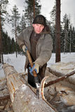 Worker peel logs using a drawknife. Royalty Free Stock Image