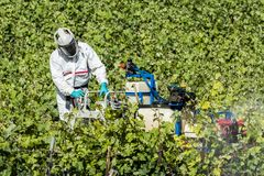 Worker With Pesticides in Champagne. Champagne-Ardenne, France - June 7, 2017: Worker with pesticides machine in a vineyard in France Royalty Free Stock Images