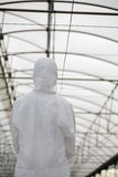 Worker In Protective Suit Standing At Greenhouse Royalty Free Stock Image