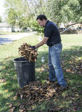 Worker Putting Leaves In Trash Can Royalty Free Stock Photography