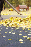 Worker removing dead leaves from the playground in the park. Worker removing dead leaves from the playground with a gasoline blower in the autumn park Royalty Free Stock Photo