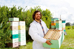 Worker removing full beehives. Worker replacing empty beehives with full ones stock photos