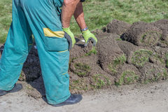 Worker with rolls of sod Royalty Free Stock Image
