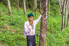 Worker in a rubber tree plantation in Thailand Stock Photos