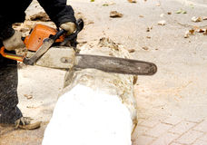 Worker saw tree trunk. A worker is sawing tree trunk with electric saw for wood Royalty Free Stock Images
