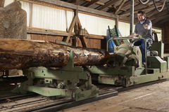 Worker at sawmill. Man working at large cutting machine at sawmill royalty free stock photo