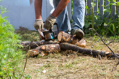 The worker saws the log with an electric saw. Stock Photography