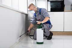 Worker Spraying Pesticide On Wall. Pest Control Worker Spraying Pesticide On Wall With Sprayer In Kitchen Royalty Free Stock Photography