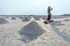 Worker standing at salt field that has pile of sea salt. Royalty Free Stock Photos