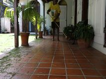 A worker sweeping grass at a tropical villa stock footage