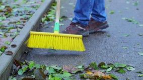 Worker sweeps leaves stock video