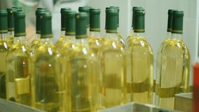 The worker takes bottles of white wine from the conveyor. Work in the winery, wine industry concept. The worker takes bottles of white wine from the conveyor stock video