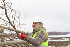 Worker throws  wooden branches Stock Images