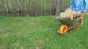 Worker transporting sawed raw firewood with wheelbarrow near pond. Worker transporting sawed fresh raw firewood with wheelbarrow near pond in farm stock footage