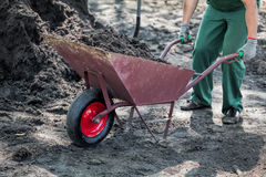 Worker transports a soil Stock Images