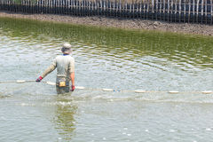 Worker use a fishing net for dragging the shrimp Stock Photo