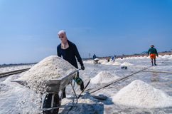 Worker use wheelbarrow carrying salt for harvest. Selective Focus. At sea salt field, worker use wheelbarrow carrying salt for harvest. Selective Focus royalty free stock photography