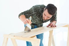 Worker using brush on wooden plank Royalty Free Stock Photography