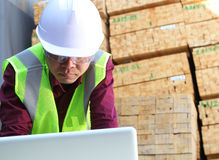 Worker using laptop. With stacking wood background Stock Photography