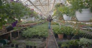 Worker watering flowers in 4K stock video