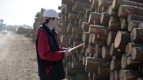 Worker in white helmet is on the harvesting of wood. stock footage