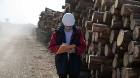 Worker in white helmet is standing on the road next to the logs, and writing something in the documents. Truck moves quickly past and makes a lot of dust stock video footage