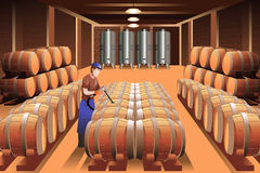 Worker in a winery Stock Photography