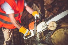Worker Wood Cutting Stock Photo