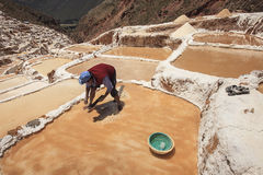 Worker working in the salt marshes of Cusco in Peru Royalty Free Stock Images