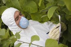 Worker Writing On Clipboard Amongst Plants Royalty Free Stock Photography