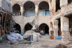 Workers on ancient tannery in the Moroccan city of Fez Royalty Free Stock Photo