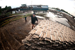 Workers ashore carrying bamboo. Stock Photography