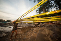 Workers ashore carrying bamboo. Royalty Free Stock Photos