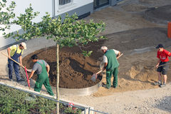 Workers carry out landscaping. DUSSELDORF - JULY 16: Workers carry out landscaping on one of the new settlements in Dusseldorf, Germany on July 16, 2013 stock photo