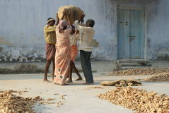Workers carrying ginger at Market in Cochin, Ind Stock Photography