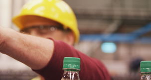 Workers checking bottles on production line stock video footage