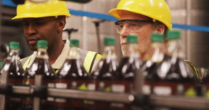 Workers checking bottles on production line stock video