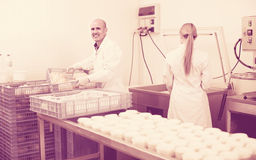 Workers on cheese production factory Royalty Free Stock Photos