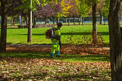 Workers Clearing Autumn Leaves on a Park Stock Photos