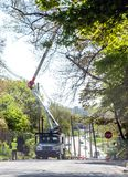 Workers clearing power lines on a city street. St Joseph Michigan, USA May 15 2019; line workers in a boom truck, clear trees from power lines on a spring day in royalty free stock photo