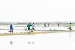 Workers collect salt in salt farm Petchaburi Stock Images