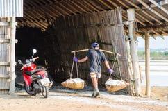 Workers collect salt in salt farm Petchaburi Royalty Free Stock Photos