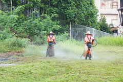 Workers cutting grass with a grass cutter machine Stock Image