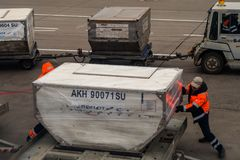 Workers are employed with loading of baggage in the plane in the airport royalty free stock photography